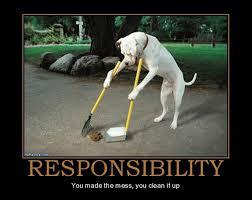 dog responsibility